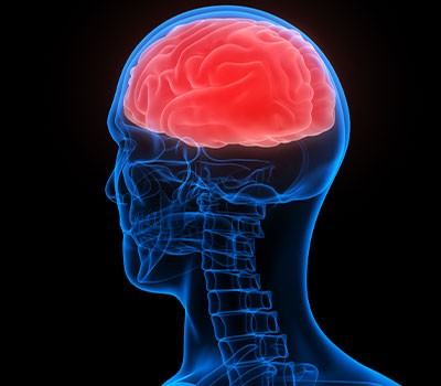 Claiming Compensation For Spinal And Brain Injuries